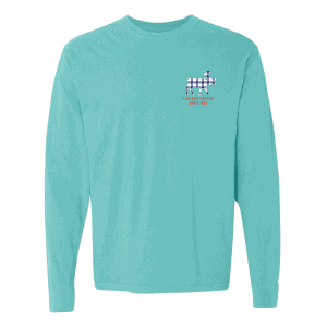Lat/long tee teal front view