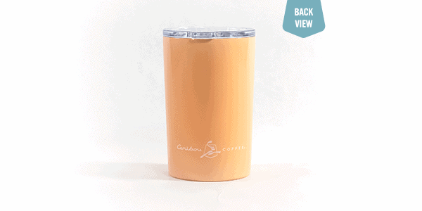 friend plus coffee plus sunshine tumbler orange back view