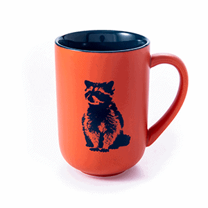 orange raccoon front