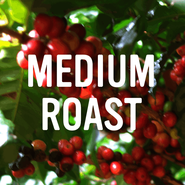 medium roast category