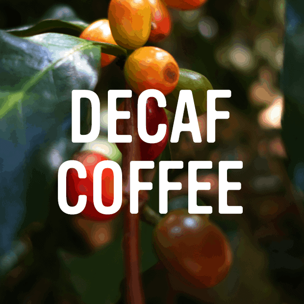 decaf category