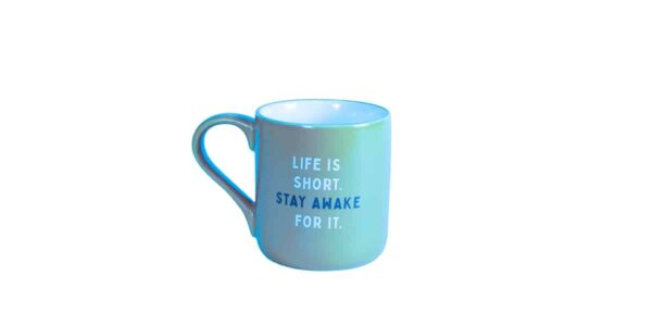 "Blue Caribou mug showing ""Life is short. Stay awake for it."""
